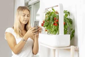 Digital Gardening mit EMSA Smart-Garden 9