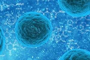 Molekulare Medikamente gegen Tumorzellen