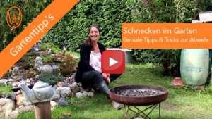 Schnecken im Garten - Youtube-Video